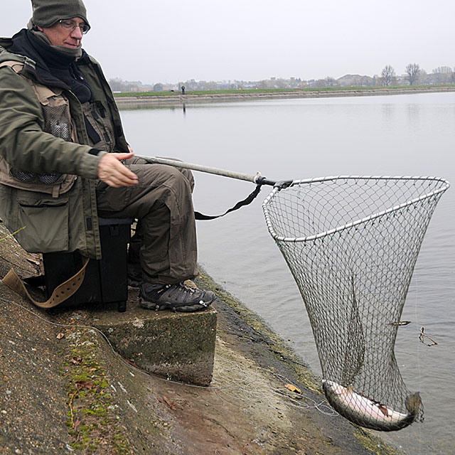 Landing net with a trout